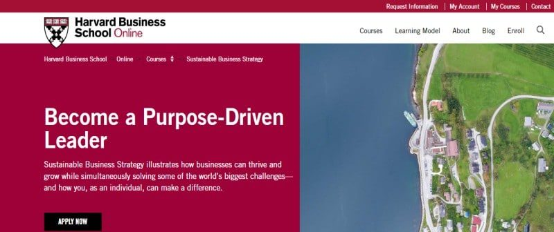 Sustainable Business Strategy by Harvard Business School